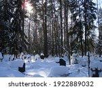 Noginsk  Moscow Region  Russia...