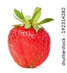 strawberries | Shutterstock . vector #192314282