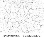 natural cracks background....   Shutterstock .eps vector #1923203372