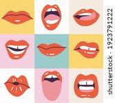 vector illustration female...   Shutterstock .eps vector #1923791222