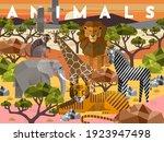 animals. vector flat...   Shutterstock .eps vector #1923947498