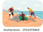 social workers rescue dolphin...   Shutterstock .eps vector #1924255865