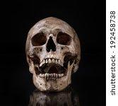 frontview of human skull open... | Shutterstock . vector #192458738