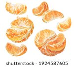 Watercolor Set With Tangerine...