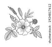 vector drawing vintage...   Shutterstock .eps vector #1924817612