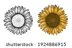 Sunflower Floral Nature Plant...