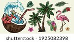 surfing colorful elements... | Shutterstock .eps vector #1925082398