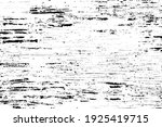 black and white vector texture... | Shutterstock .eps vector #1925419715