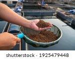 Aquaculture Farmers Hand Hold...