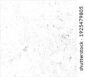 vector grunge black and white...   Shutterstock .eps vector #1925479805