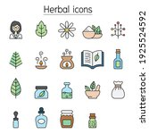 herbal color line icon set  | Shutterstock .eps vector #1925524592