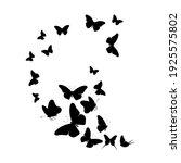flock of silhouette black... | Shutterstock . vector #1925575802