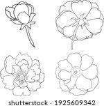 set of flower vector for... | Shutterstock .eps vector #1925609342