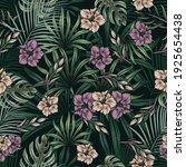 vintage tropical natural...   Shutterstock .eps vector #1925654438