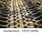 Tire Track On The Beach Of...