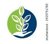 plant in hand vector logo...   Shutterstock .eps vector #1925751785