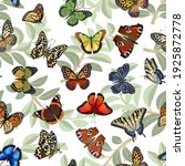 pattern with multicolored... | Shutterstock .eps vector #1925872778
