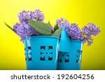 beautiful lilac flowers on a... | Shutterstock . vector #192604256