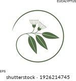 eucalyptus logo. isolated... | Shutterstock .eps vector #1926214745