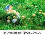 Easter Bunny. Golden Egg With...