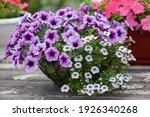 Flower Arrangement Of Purple...