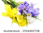 Bouquet Of Colorful Irises With ...