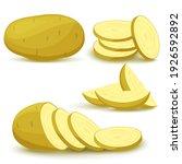 a set of whole potatoes  potato ... | Shutterstock .eps vector #1926592892