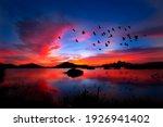 Flock Of Birds Flying On The...
