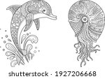 sea life set coloring page... | Shutterstock .eps vector #1927206668