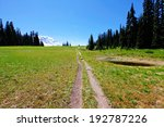 One of the scenic trails near mountain Rainer in Washington state. - stock photo