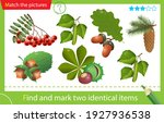 find and mark two identical... | Shutterstock .eps vector #1927936538