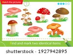 find and mark two identical... | Shutterstock .eps vector #1927942895
