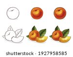 color hand drawn peach... | Shutterstock .eps vector #1927958585