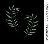 set of wild tropical plants... | Shutterstock .eps vector #1927964528