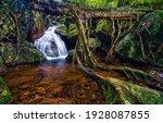 Waterfall Creek In Rainforest...