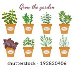 Set of vector culinary herbs in pots with labels with fresh oregano rocket thyme bay basil rosemary parsley and sage with text above - Grow The Garden