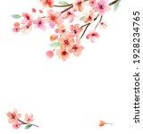 watercolor flowers. sakura. set ...   Shutterstock . vector #1928234765