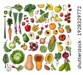 set of vegetables and fruits... | Shutterstock .eps vector #1928329772