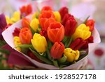 Tulip, tulips bouquet. Present for March 8, International Women