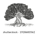 Family Tree Hand Drawn Sketch...