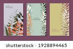 natural background with colored ... | Shutterstock .eps vector #1928894465