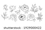 hand drawn line art collection... | Shutterstock .eps vector #1929000422