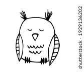 vector image of sleeping owl on ... | Shutterstock .eps vector #1929136202