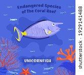 coral reef inhabitants.... | Shutterstock .eps vector #1929141488