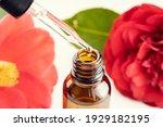 Camellia essential oil. close...