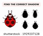 vector illustration of shadow... | Shutterstock .eps vector #1929237128
