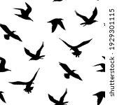 seamless pattern. seagulls... | Shutterstock .eps vector #1929301115