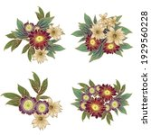 flowers set. collection of... | Shutterstock .eps vector #1929560228
