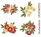 flowers set. collection of... | Shutterstock .eps vector #1929560252