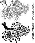 free hand sakura flower vector... | Shutterstock .eps vector #1929562028